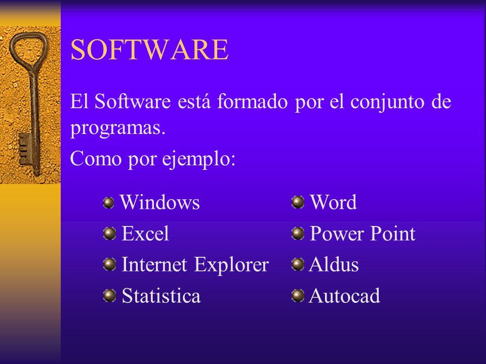 SOFTWARE El Software está formado por el conjunto de programas. Como por ejemplo: Windows Excel Internet Explorer Statistica Word Power Point Aldus Au