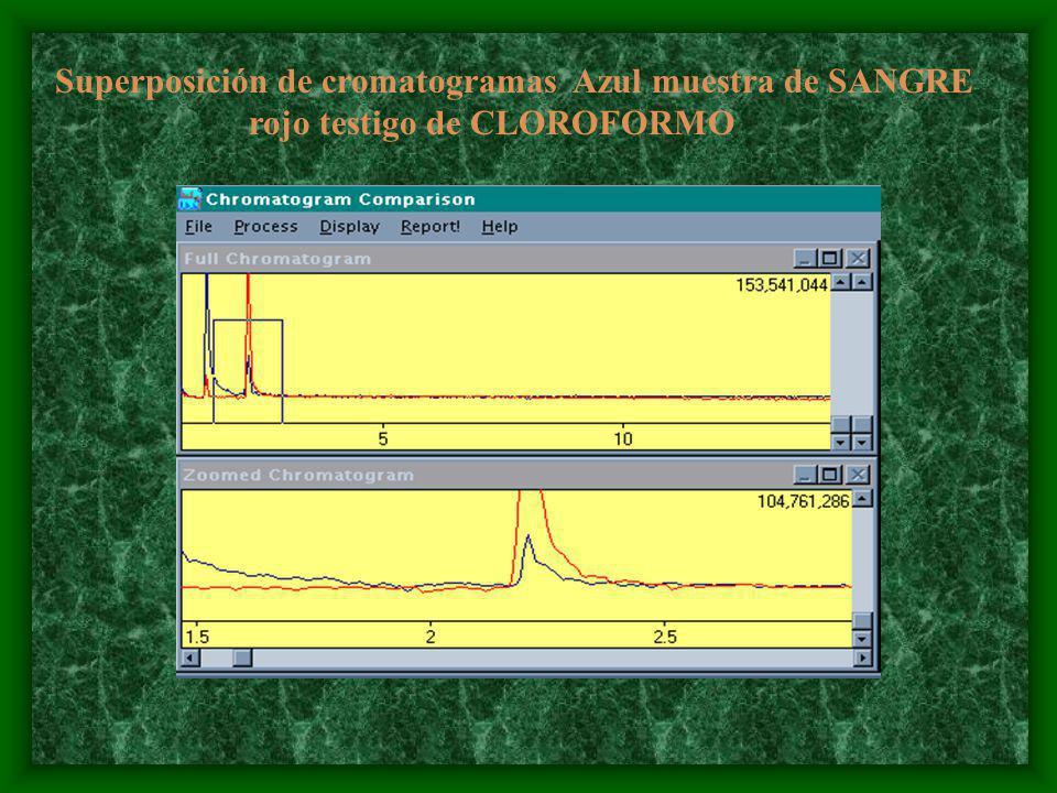 Superposición de cromatogramas Azul muestra de SANGRE rojo testigo de CLOROFORMO