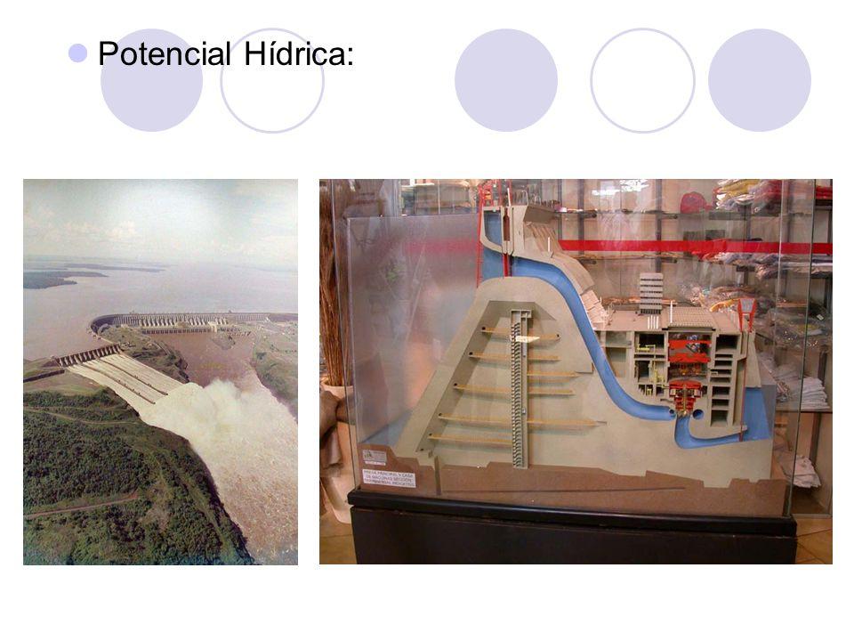 Potencial Hídrica: