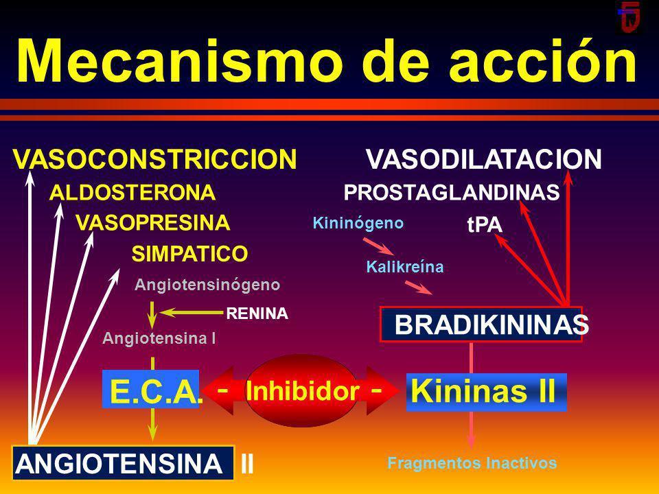smm2002 Farmacodinamia Angiotensinógeno Angiotensina I Angiotensina II Aldosterona Retención de Na TA Péptidos incativos CAPTOPRIL Kininas Enz Convert