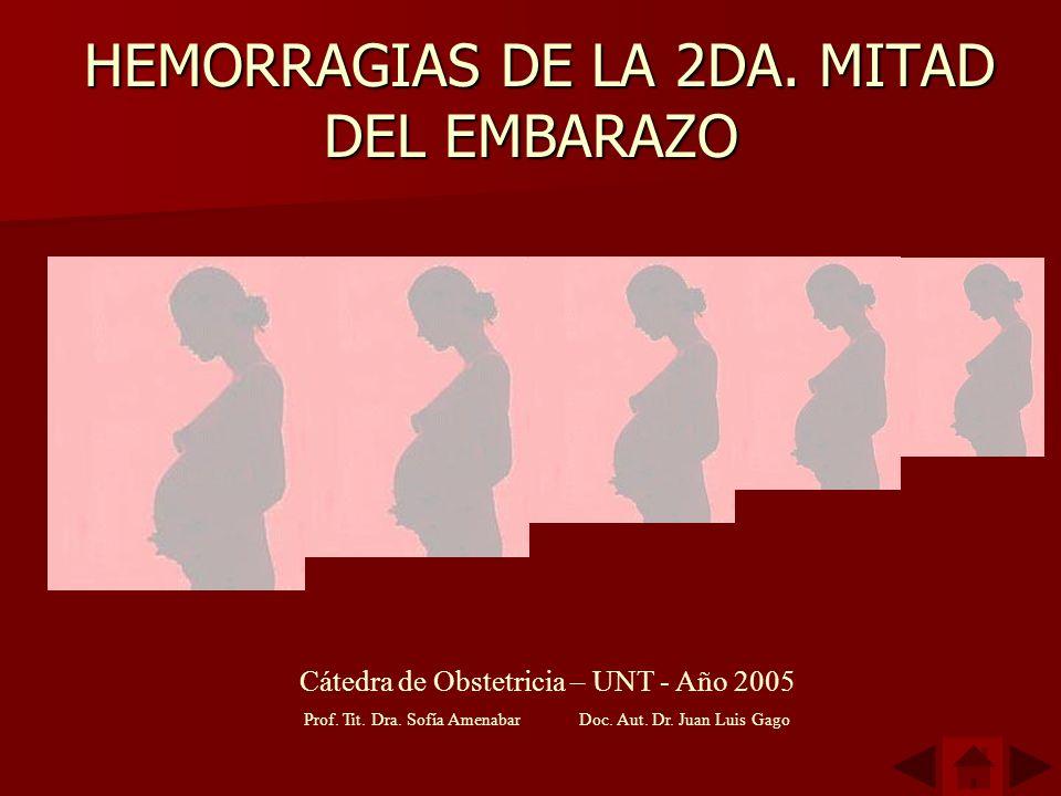 HEMORRAGIAS DE LA 2DA. MITAD DEL EMBARAZO HEMORRAGIAS DE LA 2DA. MITAD DEL EMBARAZO Cátedra de Obstetricia – UNT - Año 2005 Prof. Tit. Dra. Sofía Amen