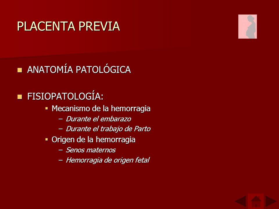 PLACENTA PREVIA ANATOMÍA PATOLÓGICA ANATOMÍA PATOLÓGICA FISIOPATOLOGÍA: FISIOPATOLOGÍA: Mecanismo de la hemorragia Mecanismo de la hemorragia –Durante el embarazo –Durante el trabajo de Parto Origen de la hemorragia Origen de la hemorragia –Senos maternos –Hemorragia de origen fetal