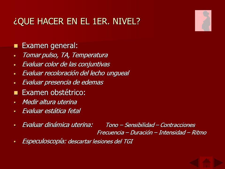 ¿QUE HACER EN EL 1ER.NIVEL.