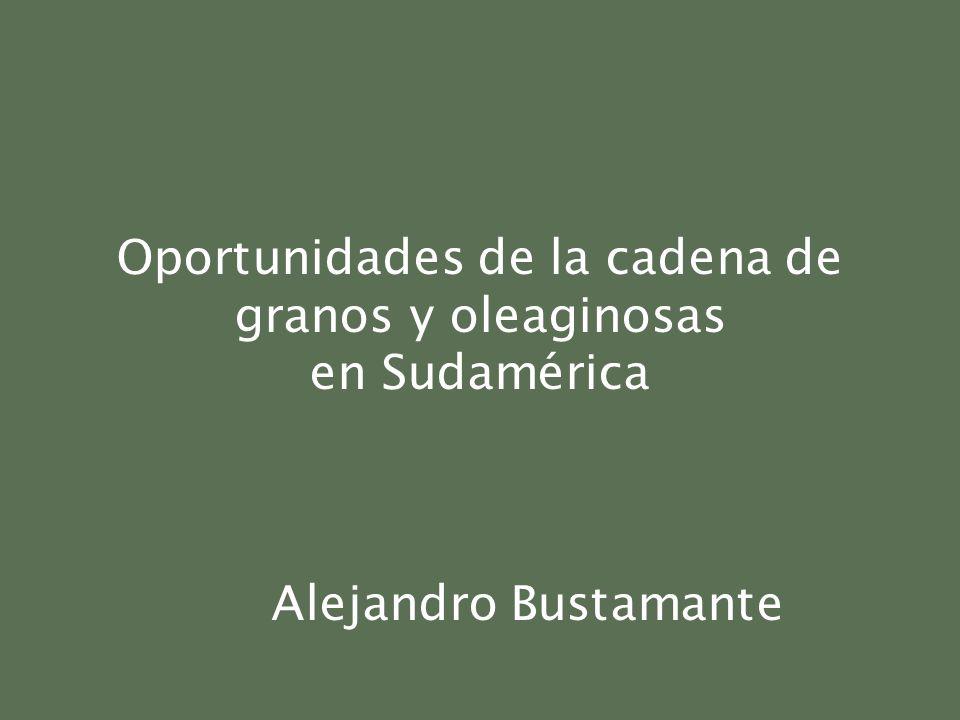Oportunidades de la cadena de granos y oleaginosas en Sudamérica Alejandro Bustamante