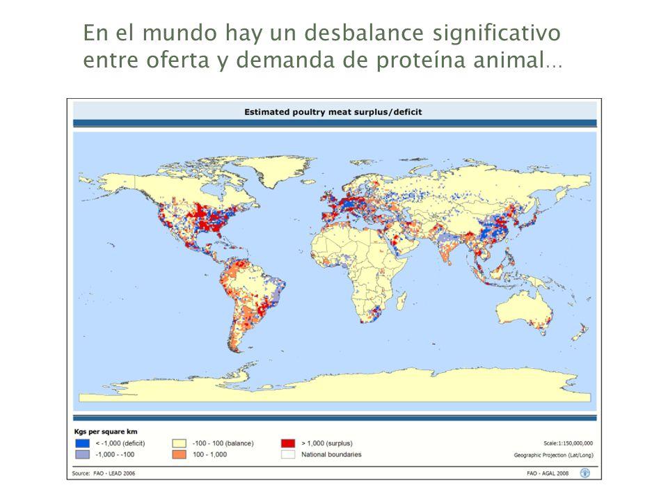 En el mundo hay un desbalance significativo entre oferta y demanda de proteína animal …