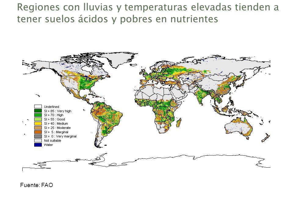 Regiones con lluvias y temperaturas elevadas tienden a tener suelos ácidos y pobres en nutrientes Fuente: FAO