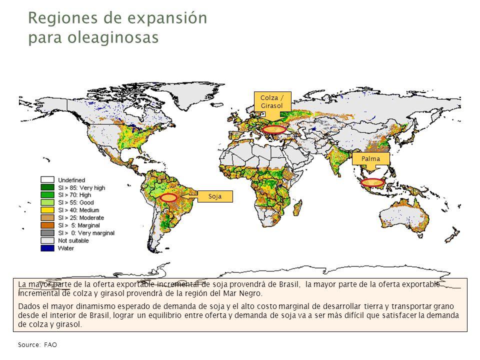 Regiones de expansión para oleaginosas Palma Soja La mayor parte de la oferta exportable incremental de soja provendrá de Brasil, la mayor parte de la