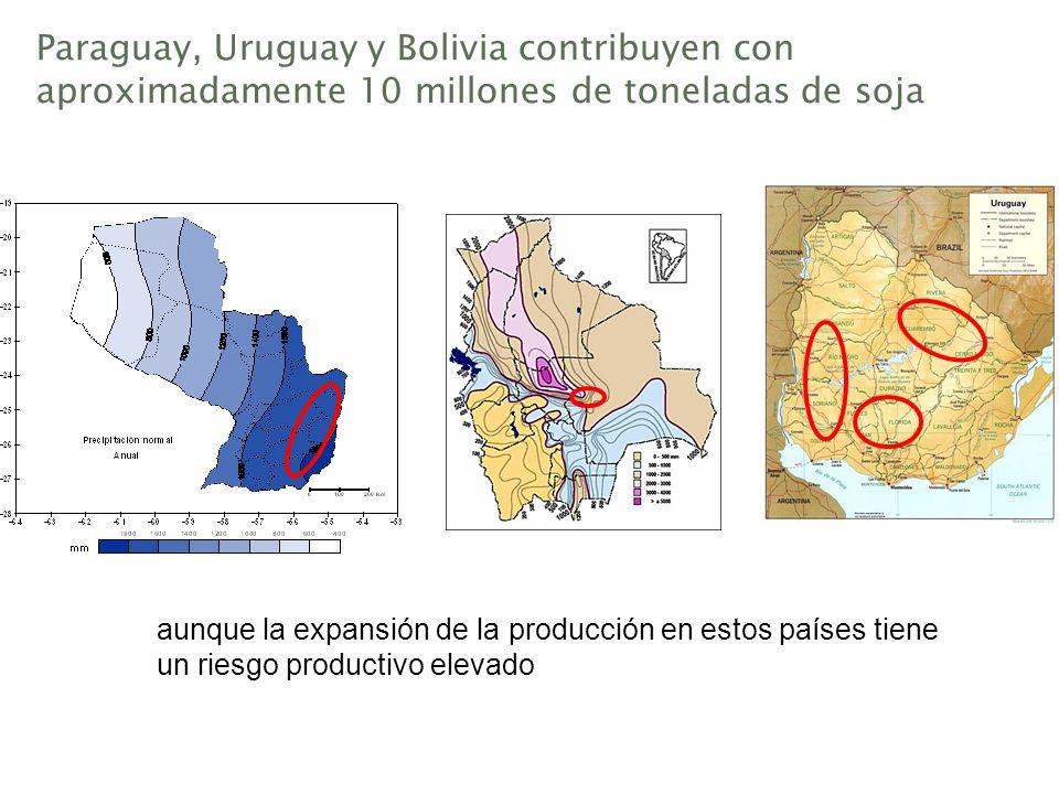 Paraguay, Uruguay y Bolivia contribuyen con aproximadamente 10 millones de toneladas de soja aunque la expansión de la producción en estos países tien
