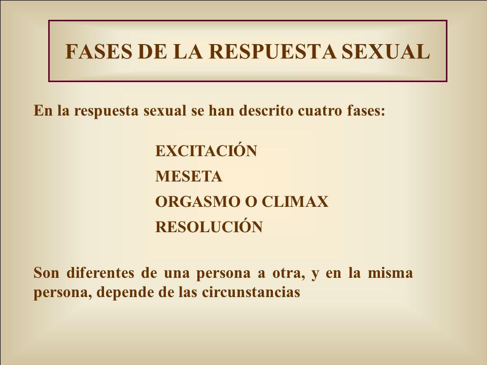 FASES DE LA RESPUESTA SEXUAL En la respuesta sexual se han descrito cuatro fases: EXCITACIÓN MESETA ORGASMO O CLIMAX RESOLUCIÓN Son diferentes de una persona a otra, y en la misma persona, depende de las circunstancias