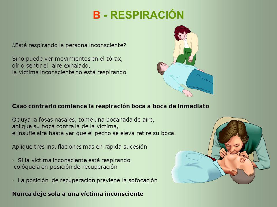 B - RESPIRACIÓN ¿Está respirando la persona inconsciente? Sino puede ver movimientos en el tórax, oír o sentir el aire exhalado, la víctima inconscien