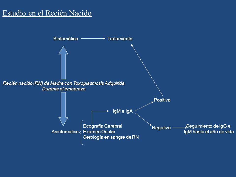 Recién nacido (RN) de Madre con Toxoplasmosis Adquirida Durante el embarazo Asintomático Sintomático Ecografía Cerebral Examen Ocular Serología en san