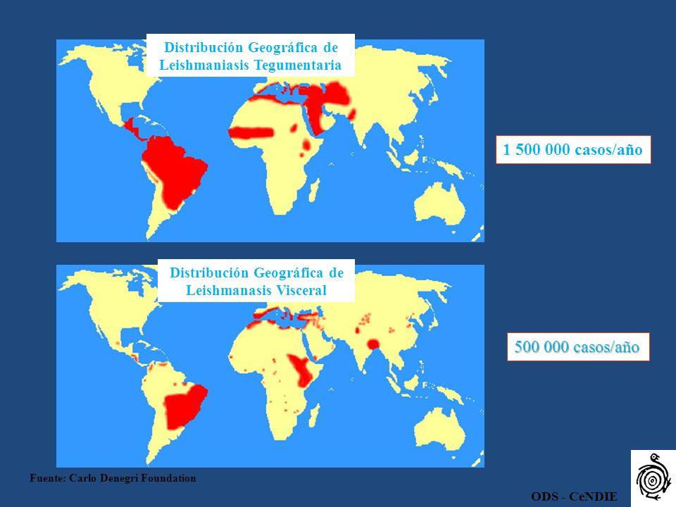 Distribución Geográfica de Leishmaniasis Tegumentaria Distribución Geográfica de Leishmanasis Visceral 1 500 000 casos/año 500 000 casos/año Fuente: C