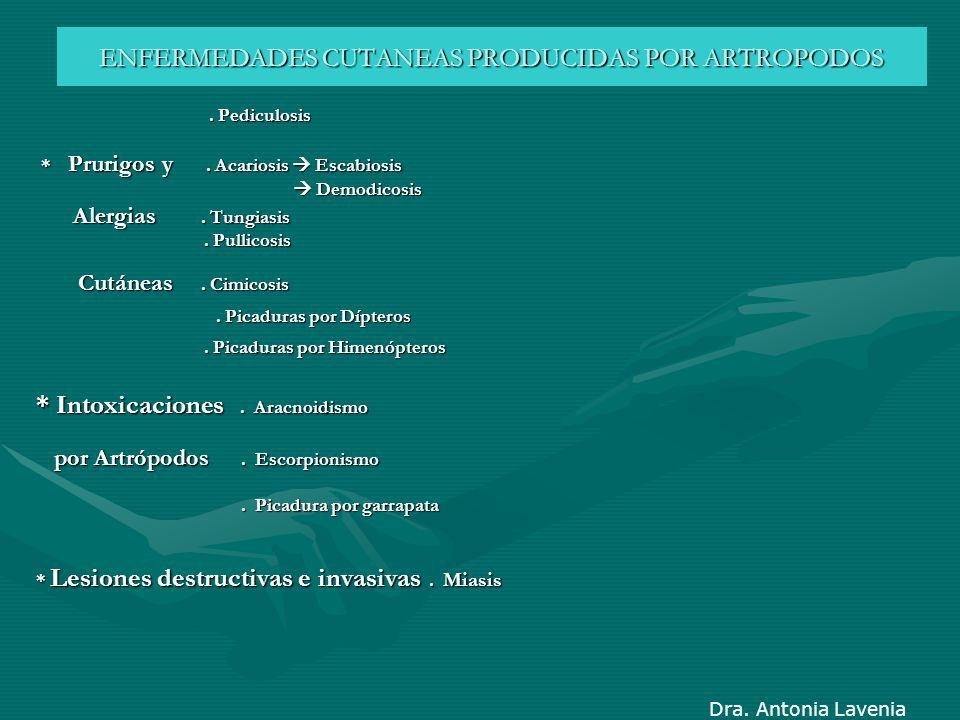 ENFERMEDADES CUTANEAS PRODUCIDAS POR ARTROPODOS. Pediculosis. Pediculosis * Prurigos y. Acariosis Escabiosis * Prurigos y. Acariosis Escabiosis Demodi