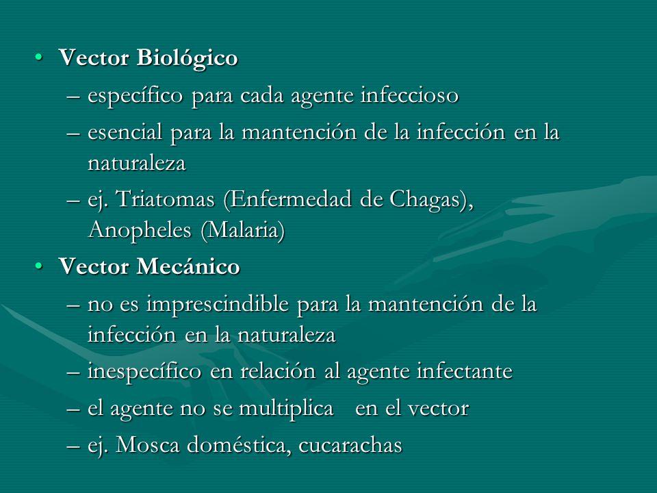 Vector BiológicoVector Biológico –específico para cada agente infeccioso –esencial para la mantención de la infección en la naturaleza –ej. Triatomas