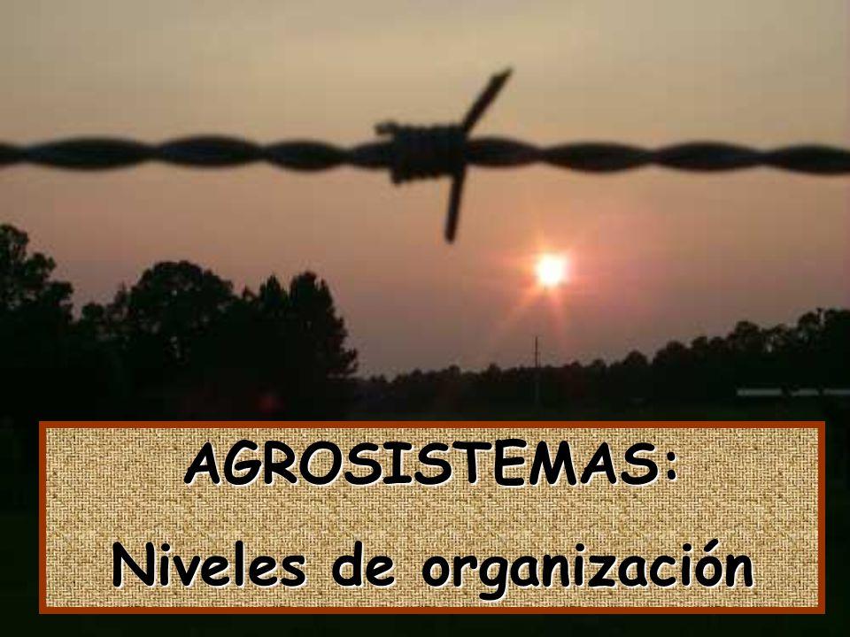 AGROSISTEMAS: Niveles de organización
