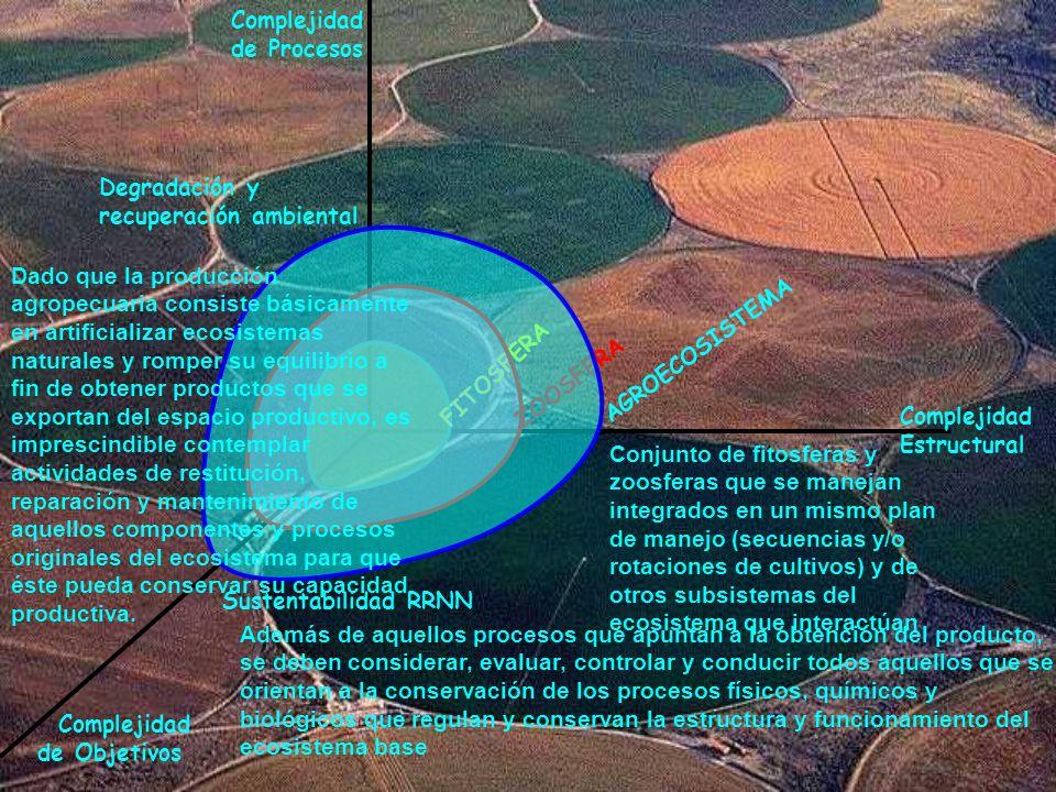 Complejidad Estructural Complejidad de Procesos Complejidad de Objetivos FITOSFERA ZOOSFERA AGROECOSISTEMA Degradación y recuperación ambiental Susten