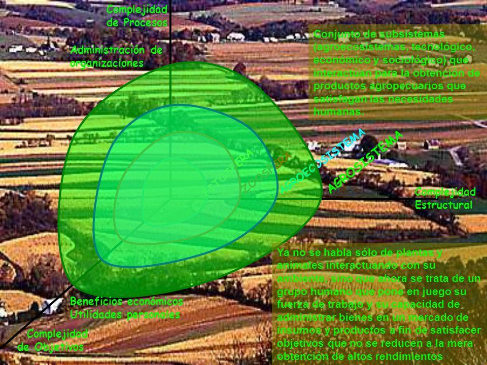 Complejidad Estructural Complejidad de Procesos Complejidad de Objetivos FITOSFERA ZOOSFERA AGROECOSISTEMA AGROSISTEMA REGIÓN Ordenamiento territorial Interrelaciones sociales Bienestar social Calidad de vida Espacialmente: Sumatoria de agrosistemas que conforman el subsistema agroproductivo del sistema rural, el cual interactúa con el sistema urbano.