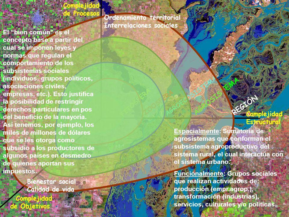 Complejidad Estructural Complejidad de Procesos Complejidad de Objetivos FITOSFERA ZOOSFERA AGROECOSISTEMA AGROSISTEMA REGIÓN Ordenamiento territorial