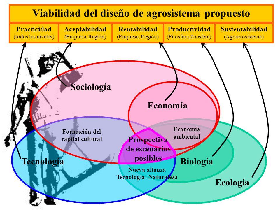 Ecología Biología Tecnología Sociología Economía Viabilidad del diseño de agrosistema propuesto Productividad (Fitosfera,Zoosfera) Sustentabilidad (Ag