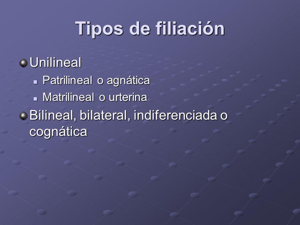 Tipos de filiación Unilineal Patrilineal o agnática Patrilineal o agnática Matrilineal o urterina Matrilineal o urterina Bilineal, bilateral, indifere