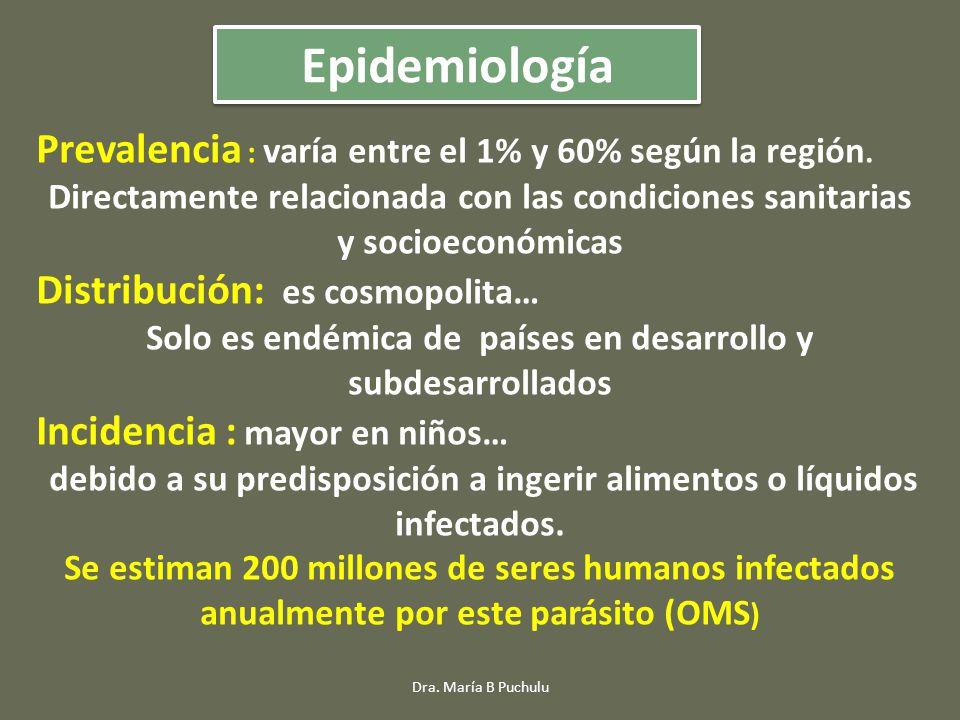 Prevalencia : varía entre el 1% y 60% según la región. Directamente relacionada con las condiciones sanitarias y socioeconómicas Distribución: es cosm