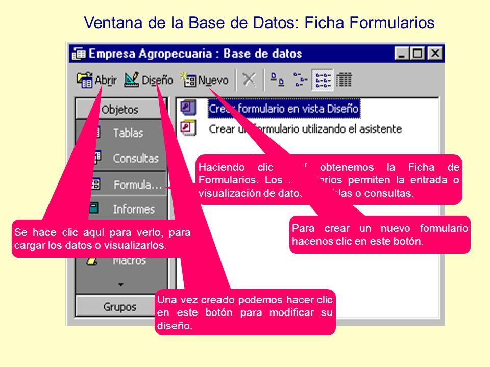 Haciendo clic aquí obtenemos la Ficha de Formularios.