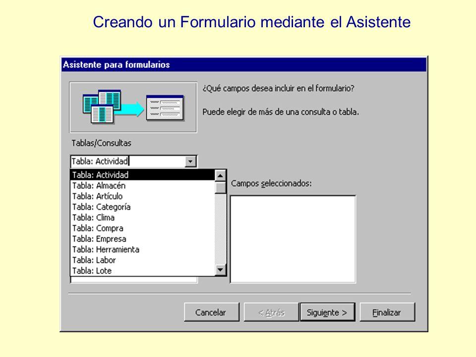 Para este formulario se elige la tabla Empresa con todos sus campos.