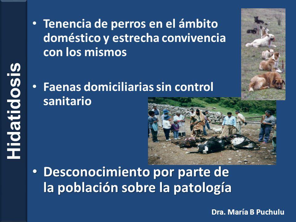 Quiste Hidatídico Hidátide Dra. María B Puchulu