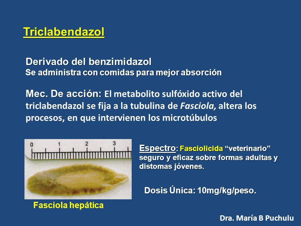 Hidatidosis: por 90 días Usos Terapéuticos del ALBENDAZOL Cisticercosis: de 10 a 30 días Dosis : 10-15 mg/Kg/día Dra. María B Puchulu