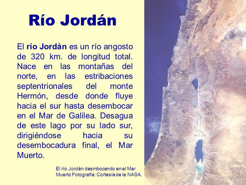 Río Jordán El río Jordán es un río angosto de 320 km. de longitud total. Nace en las montañas del norte, en las estribaciones septentrionales del mont