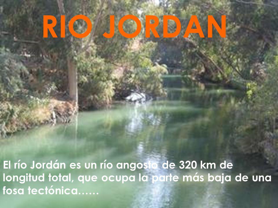 El río Jordán es un río angosto de 320 km de longitud total, que ocupa la parte más baja de una fosa tectónica…… RIO JORDAN