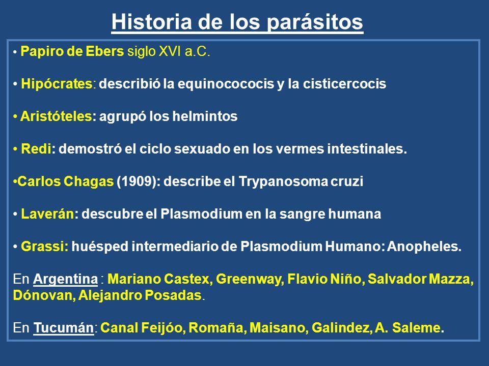 Historia de los parásitos Papiro de Ebers siglo XVI a.C. Hipócrates: describió la equinocococis y la cisticercocis Aristóteles: agrupó los helmintos R