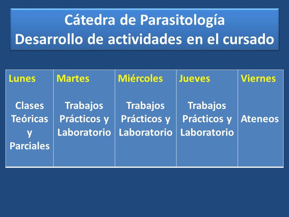 Cátedra de Parasitología Desarrollo de actividades en el cursado Cátedra de Parasitología Desarrollo de actividades en el cursado Lunes Clases Teórica
