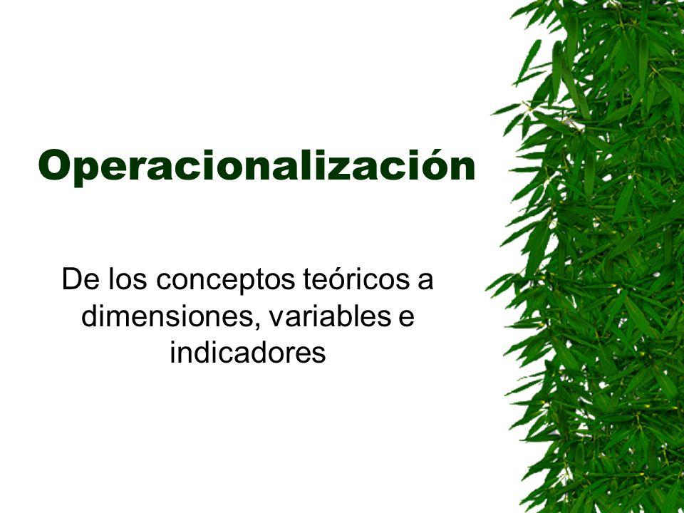 Operacionalización De los conceptos teóricos a dimensiones, variables e indicadores