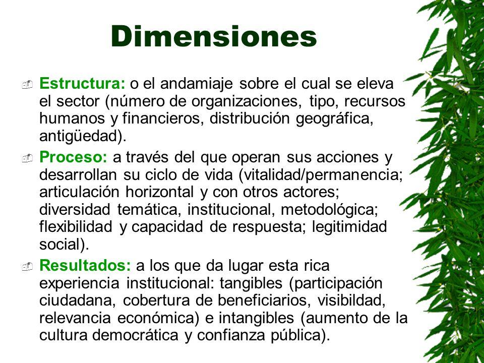 Dimensiones Estructura: o el andamiaje sobre el cual se eleva el sector (número de organizaciones, tipo, recursos humanos y financieros, distribución