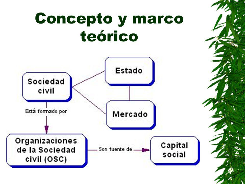 Concepto y marco teórico