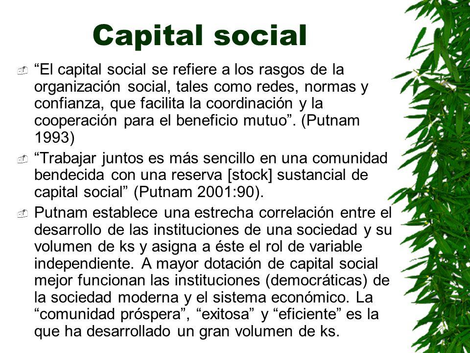 Capital social El capital social se refiere a los rasgos de la organización social, tales como redes, normas y confianza, que facilita la coordinación