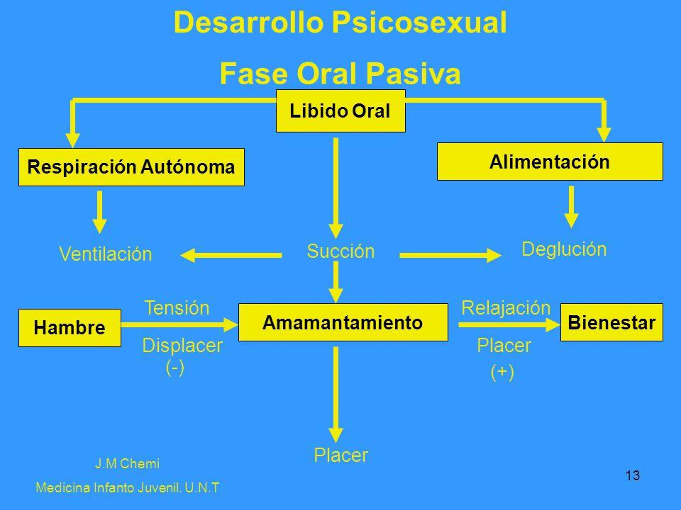 13 Desarrollo Psicosexual Fase Oral Pasiva J.M Chemi Medicina Infanto Juvenil. U.N.T Succión Placer Libido Oral Respiración Autónoma Alimentación Amam