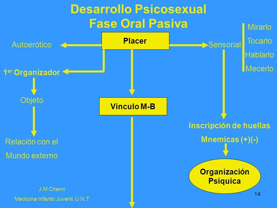 14 Desarrollo Psicosexual Fase Oral Pasiva Autoerótico 1 er Organizador Objeto Relación con el Mundo externo Inscripción de huellas Mnemicas (+)(-) Se