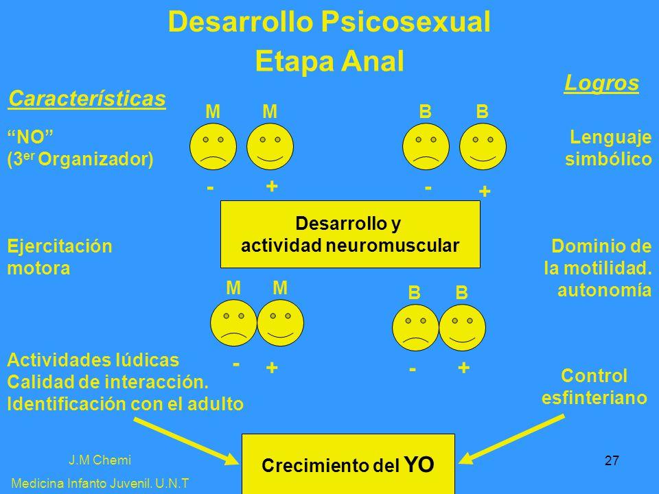 27 Desarrollo Psicosexual J.M Chemi Medicina Infanto Juvenil. U.N.T Etapa Anal Características Logros NO (3 er Organizador) Lenguaje simbólico Desarro