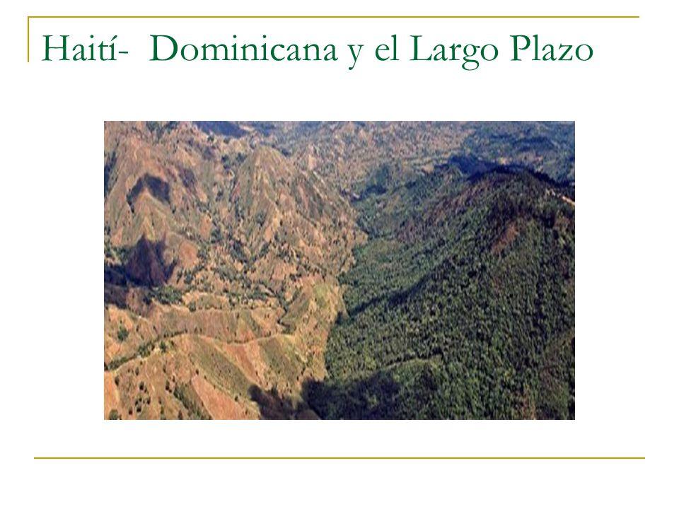 Haití- Dominicana y el Largo Plazo
