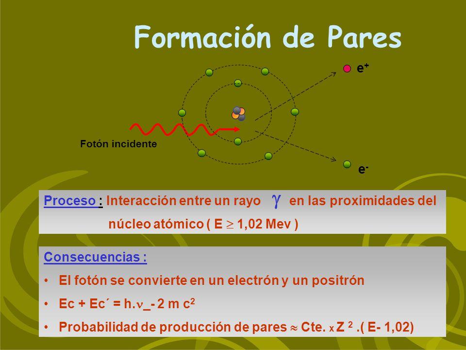 Formación de Pares Consecuencias : El fotón se convierte en un electrón y un positrón Ec + Ec´ = h. _- 2 m c 2 Probabilidad de producción de pares Cte