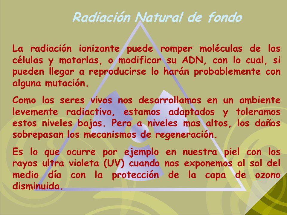 Radiación Natural de fondo La radiación ionizante puede romper moléculas de las células y matarlas, o modificar su ADN, con lo cual, si pueden llegar