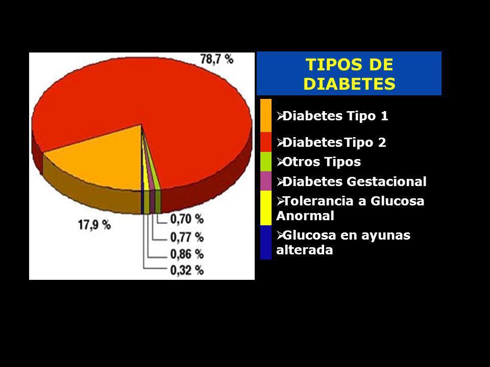 TIPOS DE DIABETES Diabetes Tipo 1 Diabetes Tipo 2 Otros Tipos Diabetes Gestacional Tolerancia a Glucosa Anormal Glucosa en ayunas alterada