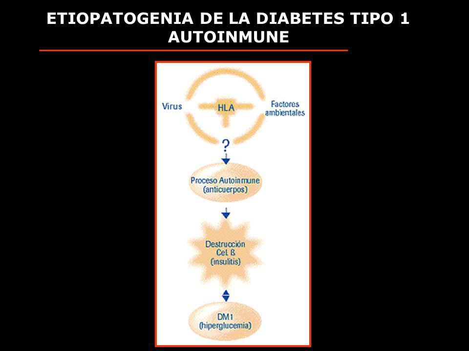 ETIOPATOGENIA DE LA DIABETES TIPO 1 AUTOINMUNE
