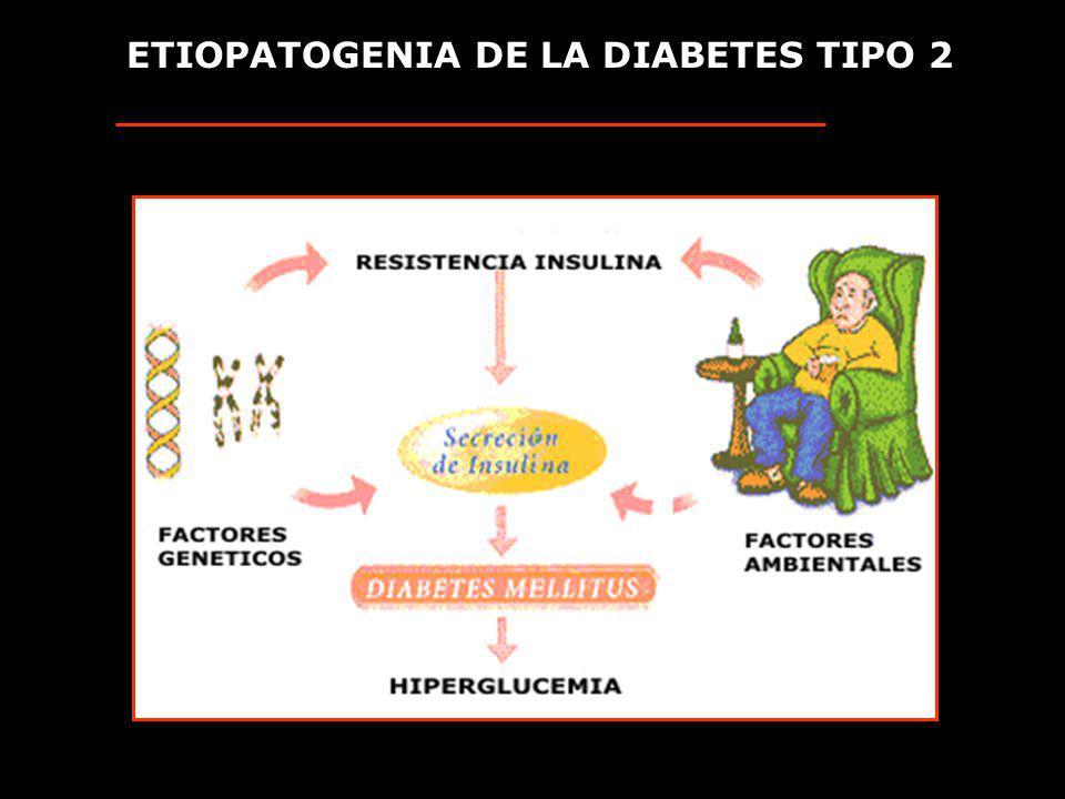 ETIOPATOGENIA DE LA DIABETES TIPO 2