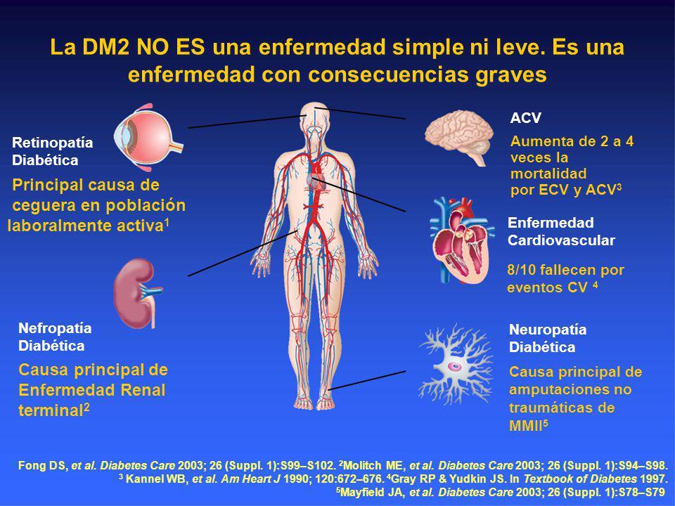 La DM2 NO ES una enfermedad simple ni leve. Es una enfermedad con consecuencias graves Retinopatía Diabética Principal causa de ceguera en población l