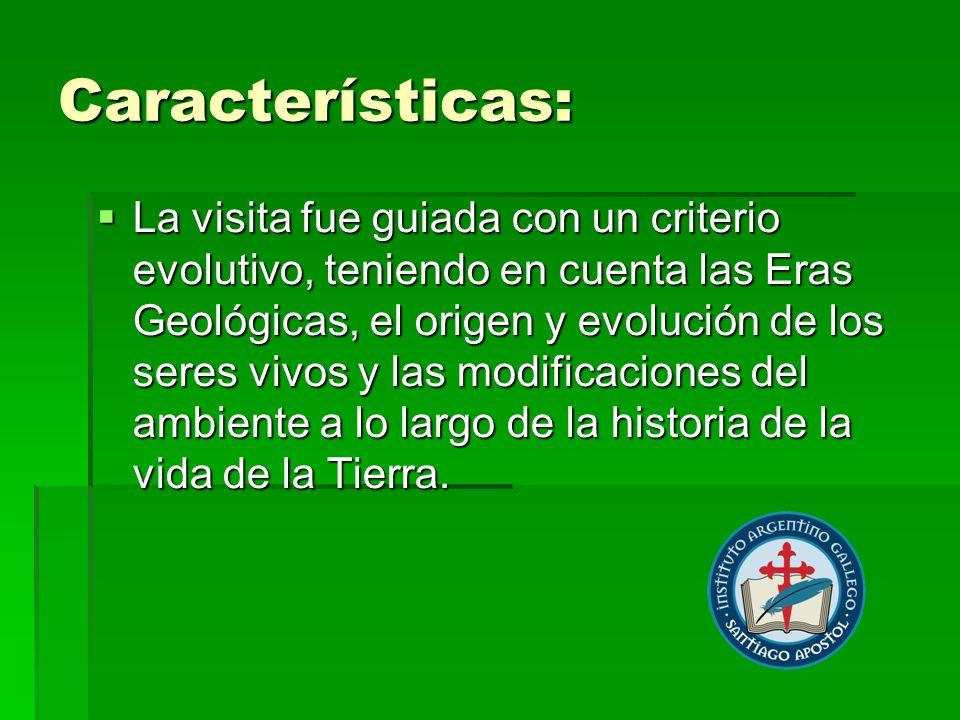 Características: La visita fue guiada con un criterio evolutivo, teniendo en cuenta las Eras Geológicas, el origen y evolución de los seres vivos y las modificaciones del ambiente a lo largo de la historia de la vida de la Tierra.