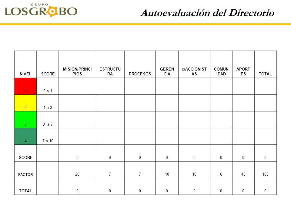 Autoevaluación del Directorio NIVELSCORE MISION/PRINCI PIOS ESTRUCTU RAPROCESOS GEREN CIA c/ACCIONIST AS COMUN IDAD APORT ESTOTAL 10 a 1 21 a 3 33 a 7