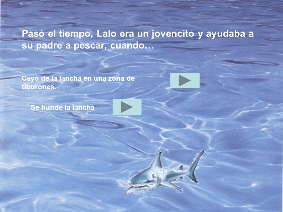 Pasó el tiempo, Lalo era un jovencito y ayudaba a su padre a pescar, cuando… Cayó de la lancha en una zona de tiburones.